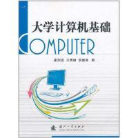 大学计算机基础 王秀丽