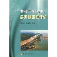 黄河下游(河南段)悬河稳定性评价