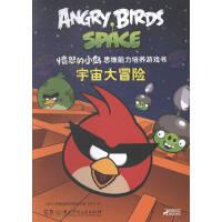 宇宙大冒险-愤怒的小鸟思维能力培养游戏书