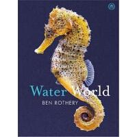精装 Water World 英文原版 水世界 Ben Rothery 博物插画家 隐藏的星球 Hidden Plane