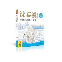 北极熊飘逝的母爱(2020新版 沈石溪动物故事画本注音美绘版)