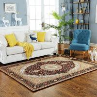 地毯客厅地毯门垫简约现代地毯地垫卧室满铺茶几大地毯地垫