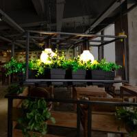 现代创意可放植物花盆架吊灯 简约餐厅客厅铁艺吊灯个性灯具灯饰
