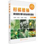 现代果树病虫害诊治丛书--柑橘橙柚病虫害诊断与防治原色图鉴(第二版)