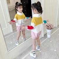 小女孩中长款高领上衣女童秋装卫衣2019春秋季新款韩版儿童洋气童装