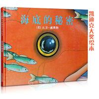 海底的秘密――启发精选美国凯迪克大奖绘本系列