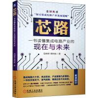 芯路 一书读懂集成电路产业的现在与未来 机械工业出版社