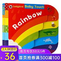 英文原版 Baby Touch Rainbow 大开本 纸板 触摸书 操作概念儿童启蒙绘本 小瓢虫触摸彩虹桥ladyb
