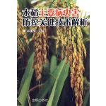 水稻主要病虫害防控关键技术解析
