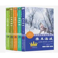 狼王洛波 西顿野生动物小说全5册灰熊卡普/泡泡*/蝙蝠阿特拉夫/公路的脚印 动物故事小说 7-10-15岁中小学生课外