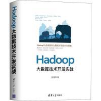 HADOOP大数据技术开发实战 清华大学出版社