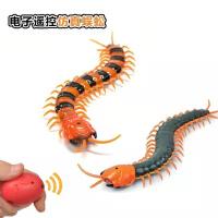 仿真遥控电动蜈蚣玩具搞怪整人动物儿童新奇整蛊逗猫男孩礼物
