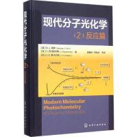 现代分子光化学(2)反应篇 化学工业出版社