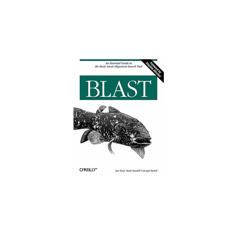 【预订】BLAST 预订商品,需要1-3个月发货,非质量问题不接受退换货。