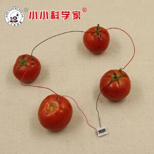 席德STEAM中小学生科学实验水果电池材料包拼插绘制益智模型