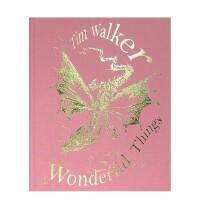 蒂姆沃克摄影集 英文原版 Tim Walker Wonderful Things 美妙之物/奇妙的事情 幕后创作图像 创意摄影作品集画册 进口原版摄影书籍