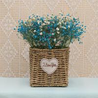 满天星干花花束家居摆设真花插花永生花勿忘我客厅装饰薰衣草 干花包