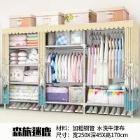 衣柜简易布衣柜钢管加粗加固全钢架组装家用双人儿童衣橱收纳柜子 2门 组装