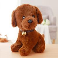 泰迪狗毛绒玩具小狗狗公仔铃铛生肖狗玩偶布娃娃抱枕儿童生日礼物