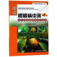 图说柑橘病虫害及农药减施增效防控技术 中国农业出版社