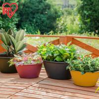 塑料大号彩色圆型多肉植物树脂绿萝爱丽丝复古创意阳台