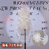 头纱女新娘韩式简约结婚婚纱头纱头饰超仙森系短款新款旅拍头纱白 发布会2号 白色头纱 100cm-135cm