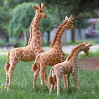 长颈鹿毛绒玩具公仔站姿鹿摆件布娃娃*玩偶儿童礼物摄影道具