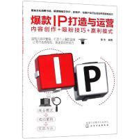 爆款IP打造与运营:内容创作+吸粉技巧+赢利模式 化学工业出版社