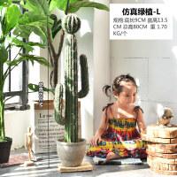 【品牌热卖】北欧创意仿真仙人掌盆栽客厅室内办公室橱窗仙人柱植物盆景大摆件