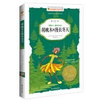胡桃木的漫长冬天――国际大奖小说