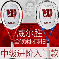 新款wilson/威尔胜网球拍 男女Exclusive rkt 碳素进阶款轻5781/5783