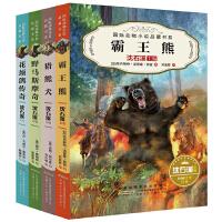 国际动物小说品藏书系(第二辑)(套装4册 猎熊犬、野马斯摩奇、花颈鸽传奇、霸王熊)