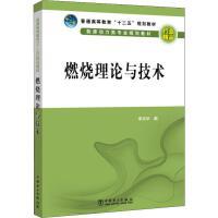 燃烧理论与技术 中国电力出版社