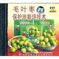 毛叶枣保护地栽培技术(VCD)