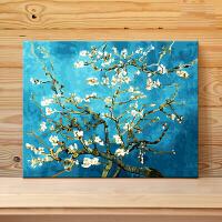 数字油画diy手工填色油彩装饰画礼物 梵高杏花情人节礼物 40x50cm 绷好加厚实木内框整套