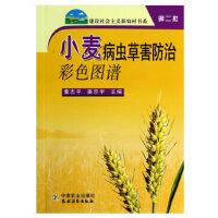 小麦病虫草防治彩色图谱
