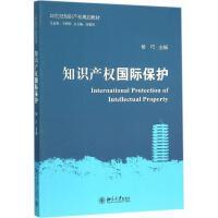 知识产权国际保护 杨巧 主编