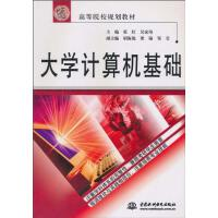 大学计算机基础 侠名 中国水利水电出版社