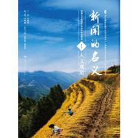 【旧书二手书九成新】 新闻的名义Ⅰ 9787300260242 中国人民大学出版社