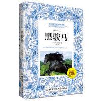 正版现货 黑骏马 安娜塞维尔 北京理工大学出版社 9787564091477 定价:29.8元