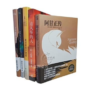 全5本 追风筝的人+阿甘正传+麦田里的守望者+老人与海+了不起的盖茨比(*中文译本)5册 著名国外小说名著