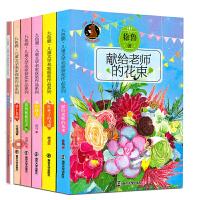 全6册第四辑九色鹿儿童文学名家获奖作品 秘花园 打补丁的飞碟 萝卜老师 我的姐姐是天使 小绿人 献给老师的花束 学生课外