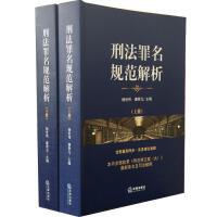 刑法罪名规范解析(上下册)