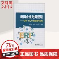 电网企业财务管理――ERP FICO的研究与应用 中国电力出版社