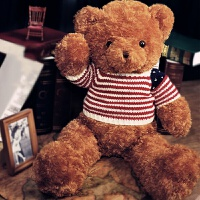 【品牌特惠】泰迪熊公仔1.6米毛绒玩具大熊送女友娃娃生日礼物可爱女孩睡觉抱 美国熊 棕色 2米 送玫瑰花+小公仔