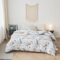 伊迪梦家纺秋冬新款优质时尚印花冬被床上用品保暖磨毛被芯单人双人床PV001