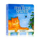 一只小蜘蛛The Itsy Bitsy Spider英文原版绘本 纸板书 经典童谣 廖彩杏书单 正能量 音乐素养培养