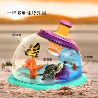科学罐头 小动物昆虫饲养放大镜观察幼儿园科学小实验户外探索儿童科教玩具