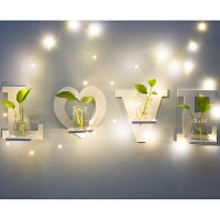 墙壁玻璃水培花瓶套装 室墙面墙上装饰品创意家居壁挂水培玻璃花瓶挂墙花盆B