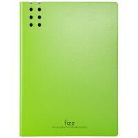 广博(GuangBo)fizz飞兹 绿色A2385高质感A4单强力文件夹板(含插页收纳袋)资料夹当当自营
